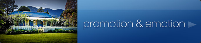 promotion and emotion